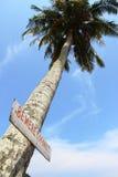 De kokosnotenetiket van Bewere Stock Afbeelding
