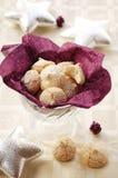 De kokosnotenkoekjes van Kerstmis Royalty-vrije Stock Foto