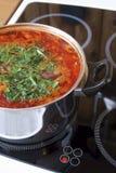 De koks van de soep op een elektrische plaat Royalty-vrije Stock Afbeelding