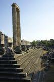De kolommen van het bewijs stock foto