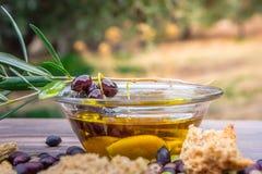 De kom met extra eerste persing, de olijven, een verse tak van olijfboom en Kretenzische beschuitdakos sluiten omhoog Stock Foto's