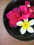 De Kom van Aromatherapy Royalty-vrije Stock Foto's