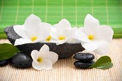 De kom van de rots met frangipani   royalty-vrije stock afbeeldingen