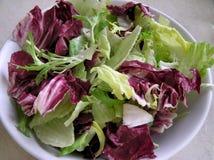 De Kom van de salade Stock Afbeeldingen