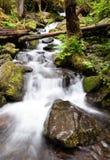 De Kom van de watervalstempel valt de Rivierkloof van Colombia Royalty-vrije Stock Afbeeldingen