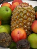 Fruitkom Royalty-vrije Stock Foto
