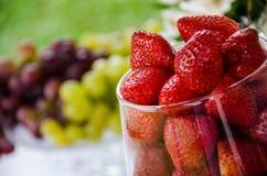 De kom van het glas met verse aardbeien royalty-vrije stock afbeelding