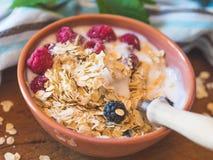 De kom van de Smoothieyoghurt met haver, bessen Stock Fotografie