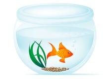 De Kom van vissen stock illustratie