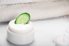 De komkommer van de room Royalty-vrije Stock Afbeelding