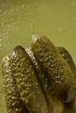 De komkommer van groenten in het zuur Royalty-vrije Stock Foto