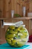 De komkommers van groenten in het zuur Royalty-vrije Stock Afbeelding