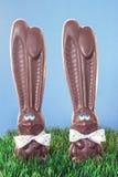 De Konijntjes van de chocolade in Gras Stock Fotografie