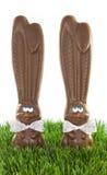 De Konijntjes van de chocolade in Gras Stock Foto