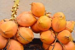 De koning Coconuts Display For verkoopt op Kleine Straat in Malwana Stock Fotografie