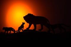 De koning van dierensilhouet Stock Afbeelding