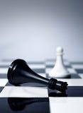 De koning van het schaak is dood Stock Fotografie