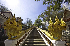 De koning van Nagas bij tempel Khaokalok Stock Fotografie