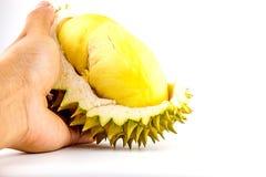 De koning van vruchten, durian geïsoleerd op witte durian achtergrond, is stinkende vruchten Royalty-vrije Stock Afbeelding