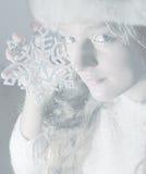De Koningin van de sneeuw Stock Foto