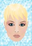 De koningin van de winter Royalty-vrije Stock Foto