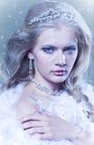 De koningin van de winter Stock Foto's