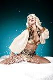 De koningin van de winter Royalty-vrije Stock Afbeeldingen