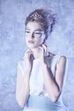 De Koningin van de winter Stock Foto