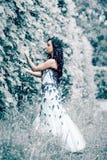 De koningin van het de winterijs stock afbeeldingen