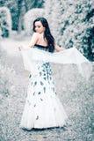 De koningin van het de winterijs stock foto's