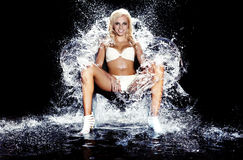De Koningin van het ijs. Stock Fotografie