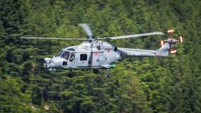 De koninklijke helikopter van de Lynx van het Leger Stock Foto's