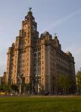 De Koninklijke Lever die op Pierhead in Liverpool, het UK voortbouwen Stock Afbeelding