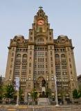 De Koninklijke Lever die op Pierhead in Liverpool, het UK voortbouwen Royalty-vrije Stock Afbeelding