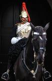 De koninklijke Wacht van het Paard Stock Foto's