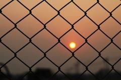 De kooi en de zonsondergang van het staalnetwerk Stock Foto's