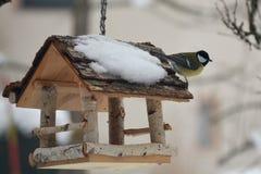 De koolmees op het vogelhuis Stock Foto's