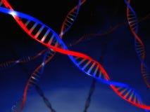 De Koorden van DNA Royalty-vrije Stock Afbeeldingen