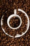 De kop en de bonen van de koffie Stock Afbeelding