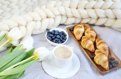 De kop met cappuccino en croissants, bessen, witte pastelkleurreus breit deken stock foto