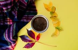 De kop thee en de bladerenvlakte lagen stock foto
