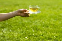 De kop thee van de handholding op zonnige dag Royalty-vrije Stock Afbeeldingen