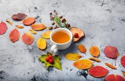 De kop thee van de de herfstsamenstelling De herfstbladeren op donkere achtergrond Stock Foto