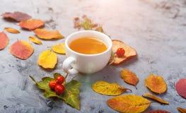 De kop thee van de de herfstsamenstelling De herfstbladeren op donkere achtergrond Royalty-vrije Stock Fotografie