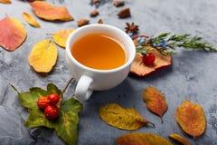 De kop thee van de de herfstsamenstelling De herfstbladeren op donkere achtergrond Stock Fotografie