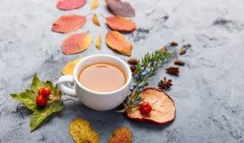 De kop thee van de de herfstsamenstelling De herfstbladeren op donkere achtergrond Royalty-vrije Stock Afbeeldingen