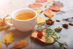 De kop thee van de de herfstsamenstelling De herfstbladeren op donkere achtergrond Royalty-vrije Stock Afbeelding