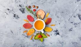 De kop thee van de de herfstsamenstelling De herfstbladeren op donkere achtergrond Royalty-vrije Stock Foto