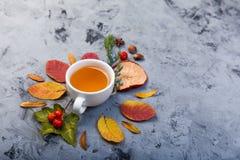 De kop thee van de de herfstsamenstelling De herfstbladeren op donkere achtergrond Stock Foto's