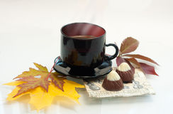 De kop van de herfst van koffie Royalty-vrije Stock Foto's